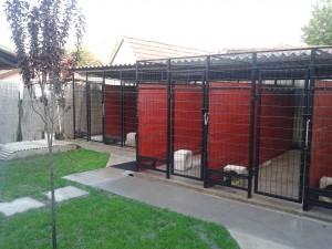 DogWebShop Kutyapanzió - Kennelsor 13