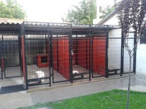 DogWebShop Kutyapanzió - Kennelsor 11