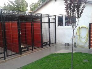 DogWebShop Kutyapanzió - Kennelsor 2